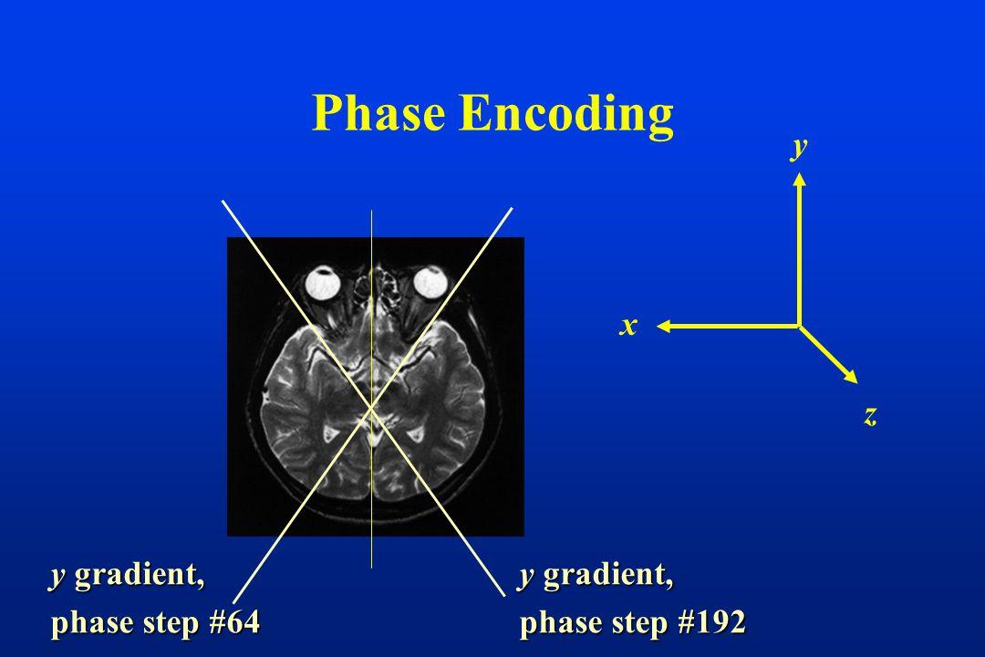 Phase Encoding z y x y gradient, phase step #192 y gradient, phase step #64