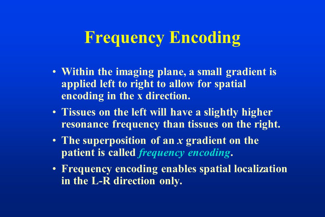 Frequency Encoding Within the imaging plane, a small gradient is applied left to right to allow for spatial encoding in the x direction. Tissues on th