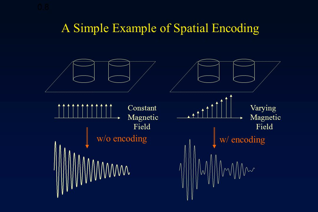 Spatial Decoding of the MR Signal Frequency Decomposition
