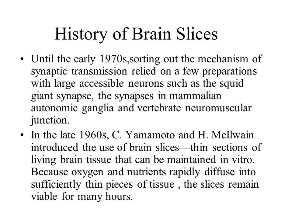 Where are brain slices from.