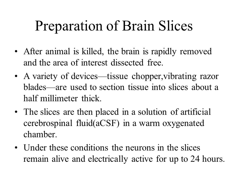 Advantages Tissue slices are thick enough to preserve many circuits present in s given brain area.