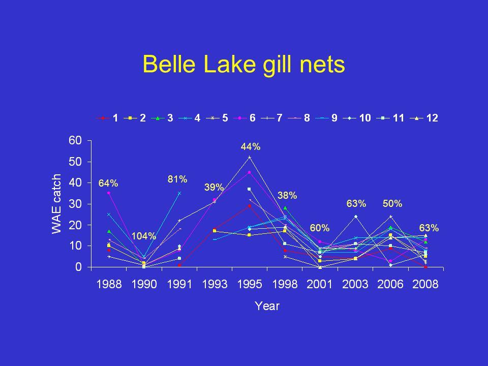 Belle Lake gill nets 64% 104% 81% 39% 44% 38% 60% 63%50% 63%