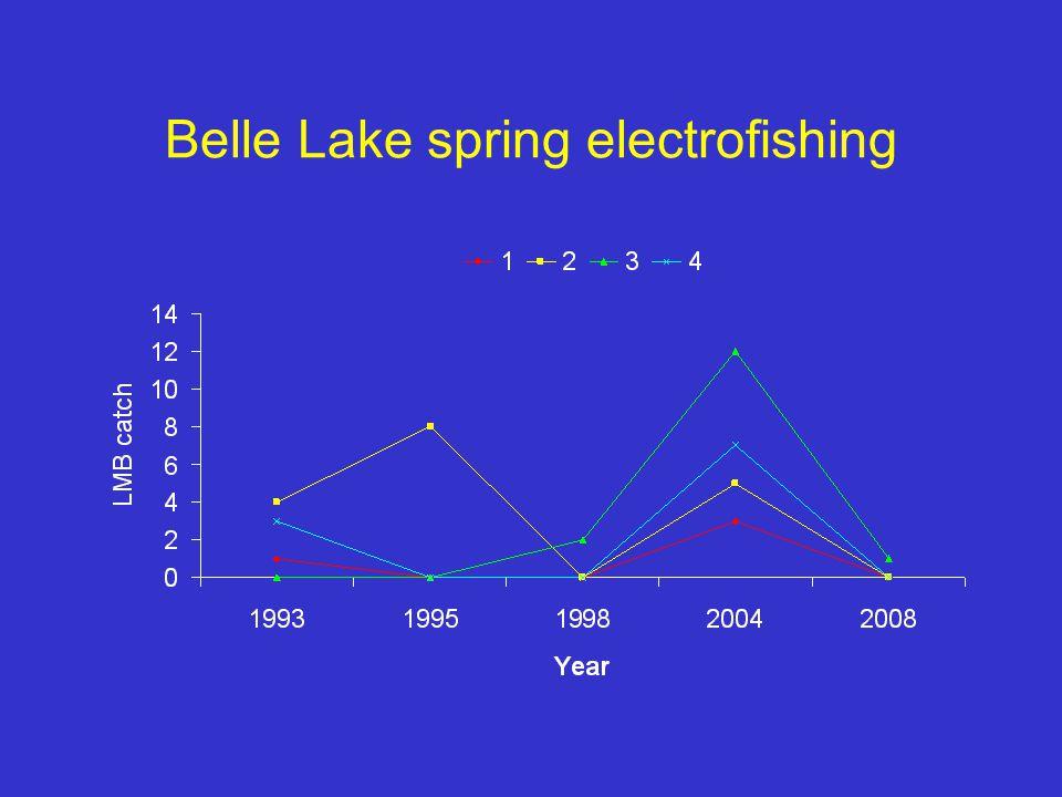 Belle Lake spring electrofishing