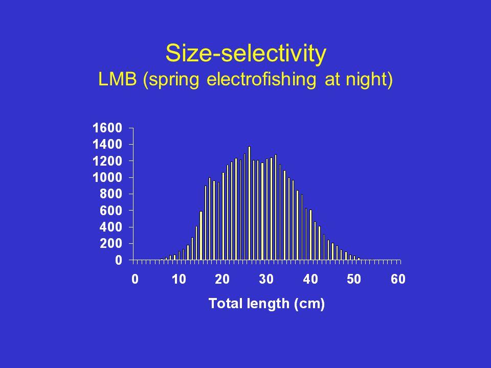 Size-selectivity LMB (spring electrofishing at night)