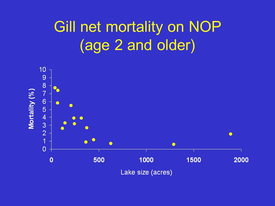 Gill net mortality on NOP (age 2 and older)