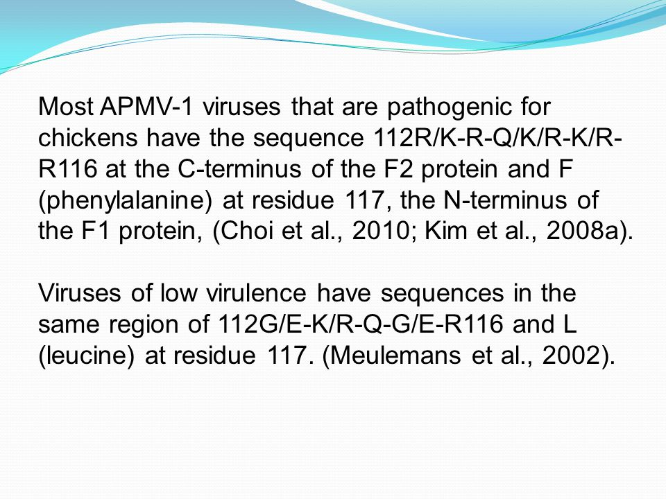Most APMV-1 viruses that are pathogenic for chickens have the sequence 112R/K-R-Q/K/R-K/R- R116 at the C-terminus of the F2 protein and F (phenylalanine) at residue 117, the N-terminus of the F1 protein, (Choi et al., 2010; Kim et al., 2008a).