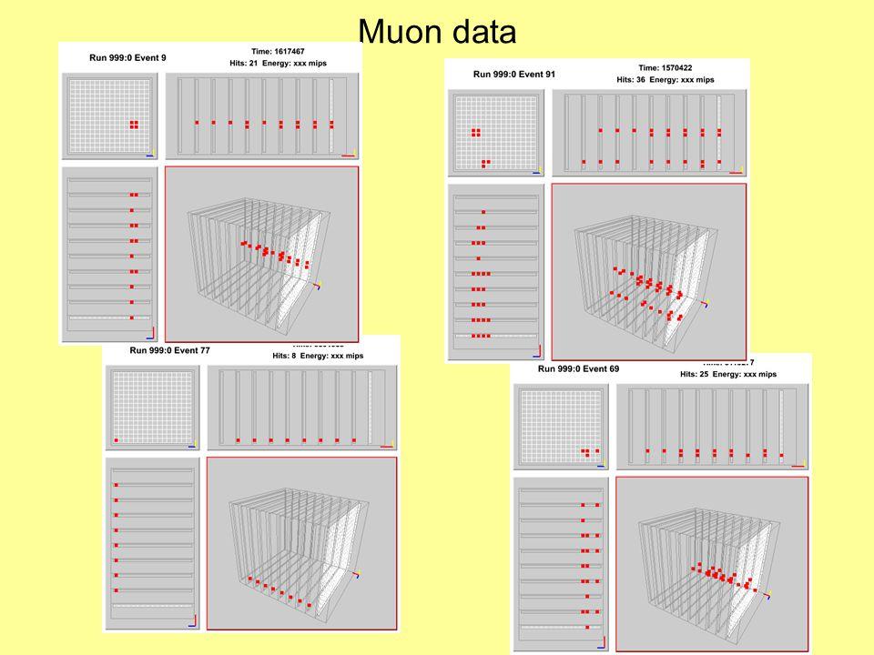 Muon data