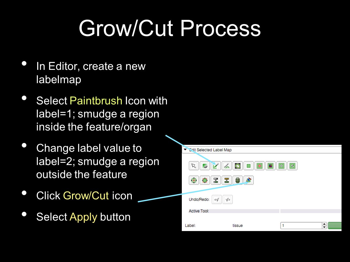 Grow/Cut Process In Editor, create a new labelmap Select Paintbrush Icon with label=1; smudge a region inside the feature/organ Change label value to label=2; smudge a region outside the feature Click Grow/Cut icon Select Apply button
