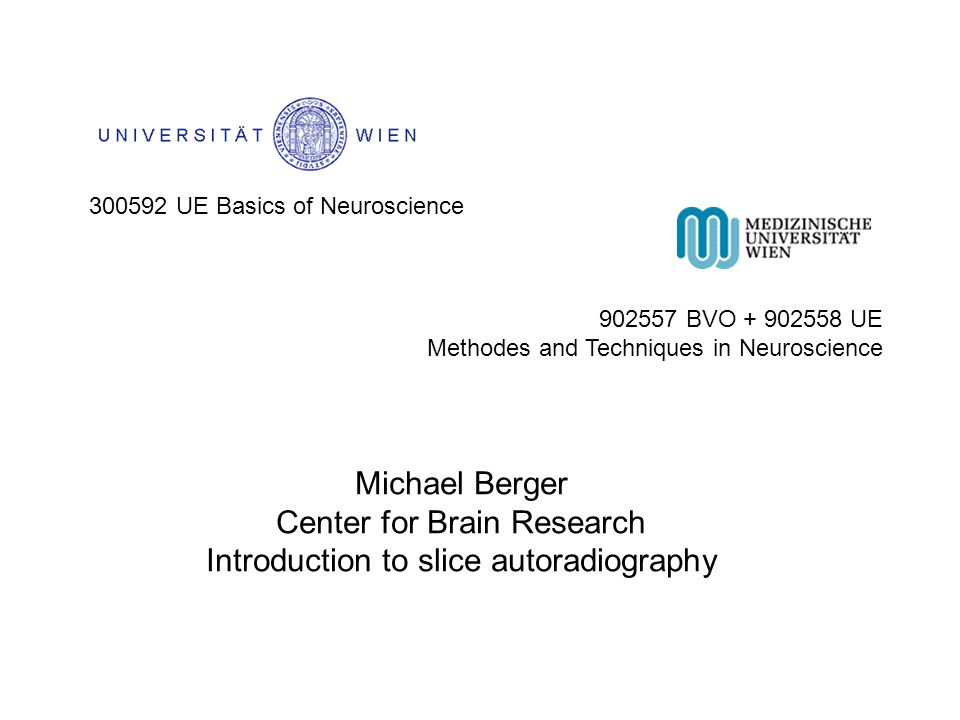 300592 UE Basics of Neuroscience 902557 BVO + 902558 UE Methodes and Techniques in Neuroscience Michael Berger Center for Brain Research Introduction