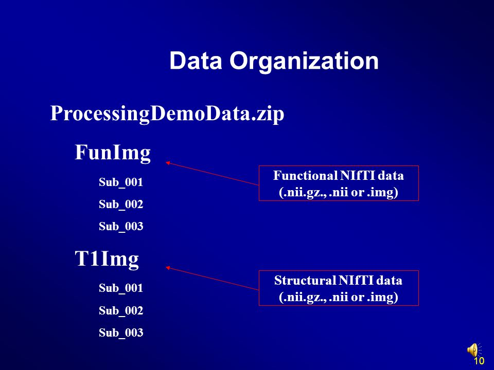 Data Organization ProcessingDemoData.zip FunImg Sub_001 Sub_002 Sub_003 T1Img Sub_001 Sub_002 Sub_003 Functional NIfTI data (.nii.gz.,.nii or.img) Str