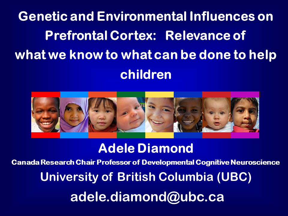 Genetic and Environmental Influences on Prefrontal Cortex: Relevance of what we know to what can be done to help children Adele Diamond Canada Research Chair Professor of Developmental Cognitive Neuroscience University of British Columbia (UBC) adele.diamond@ubc.ca