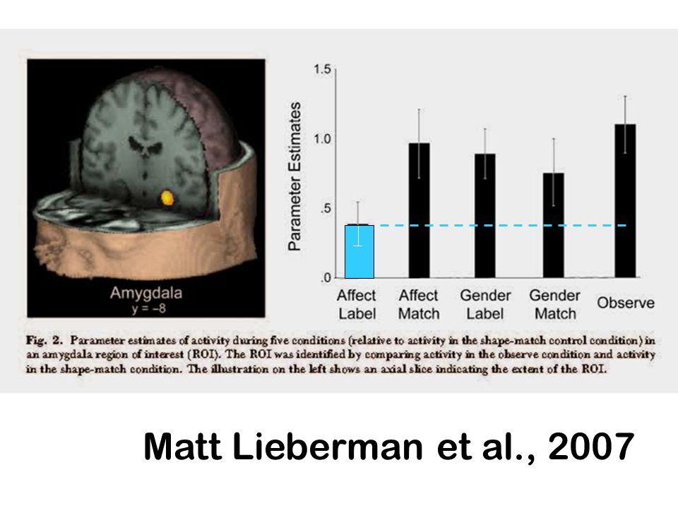 Matt Lieberman et al., 2007