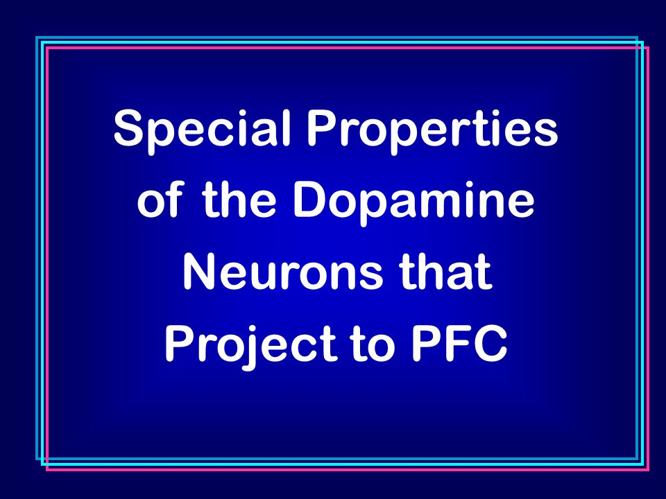 Special Properties of the Dopamine Neurons that Project to PFC