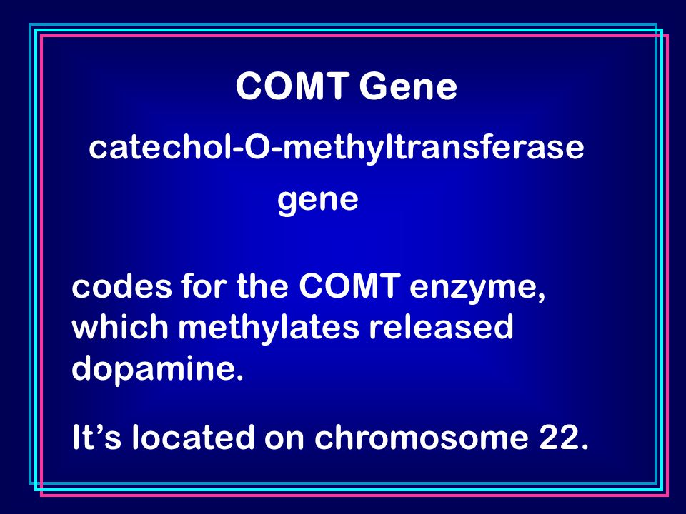 COMT Gene catechol-O-methyltransferase gene codes for the COMT enzyme, which methylates released dopamine.