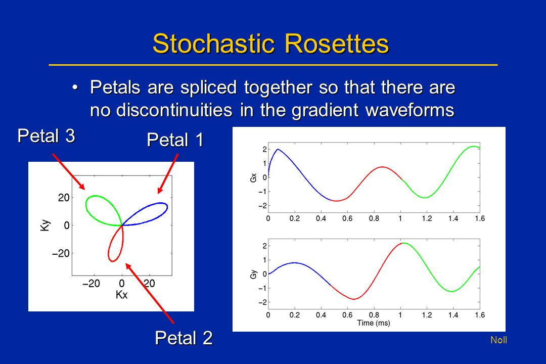 Noll Stochastic Rosettes Petals are spliced together so that there are no discontinuities in the gradient waveformsPetals are spliced together so that there are no discontinuities in the gradient waveforms Petal 1 Petal 3 Petal 2