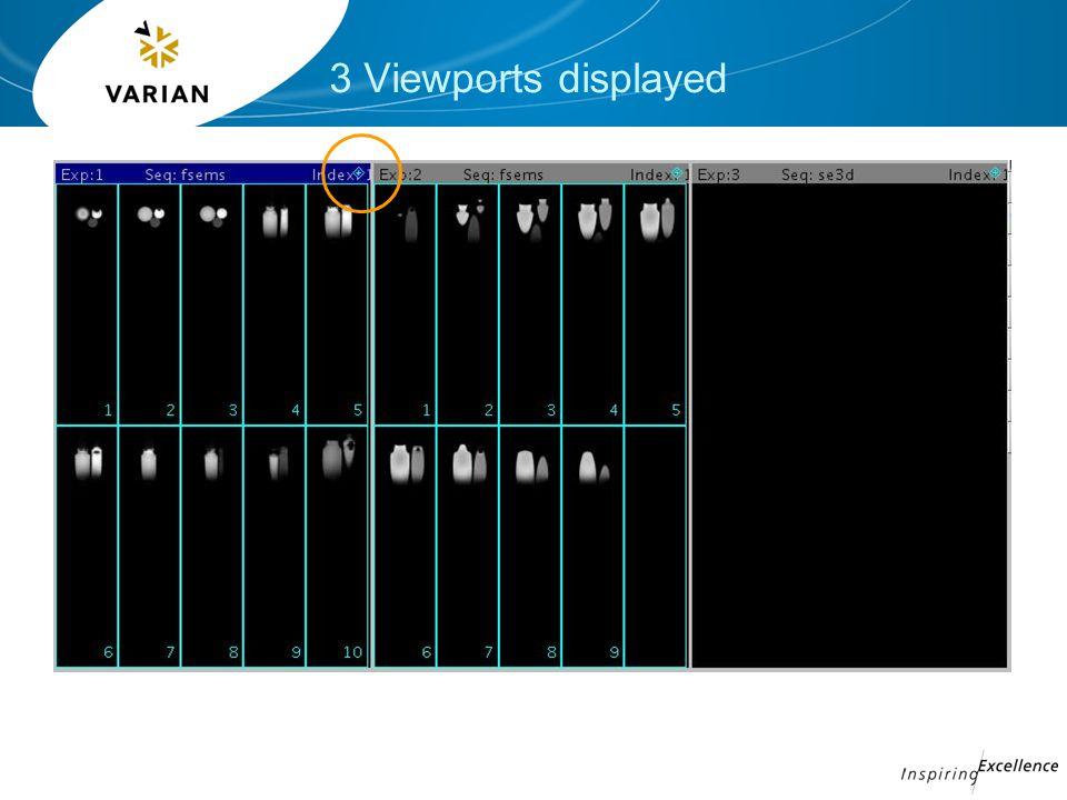 3 Viewports displayed