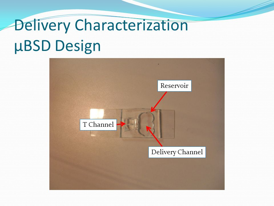 Delivery Characterization Experimental Set-up μBSD Valve DI Water Lines T Channel Vacuum Line