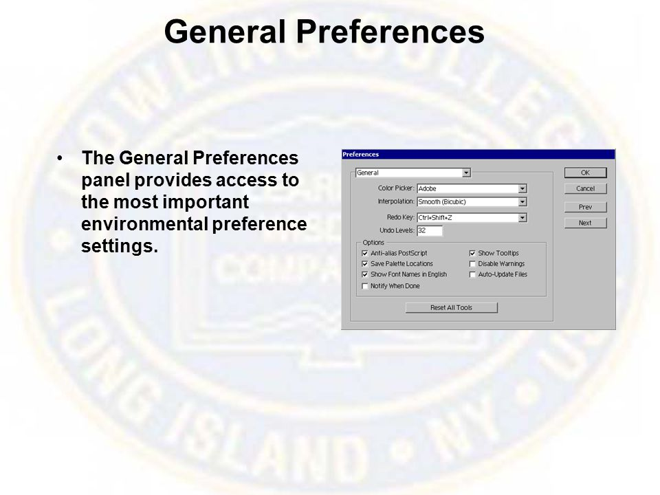 General Preferences The General Preferences panel provides access to the most important environmental preference settings.