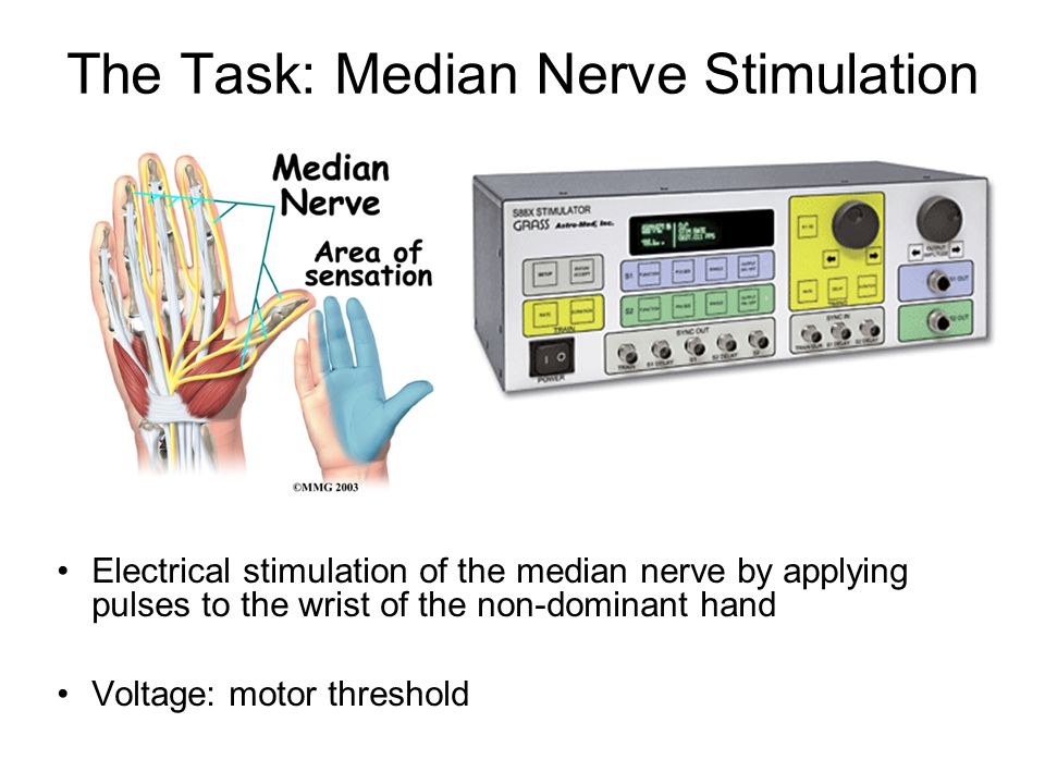 The Task: Median Nerve Stimulation Electrical stimulation of the median nerve by applying pulses to the wrist of the non-dominant hand Voltage: motor threshold