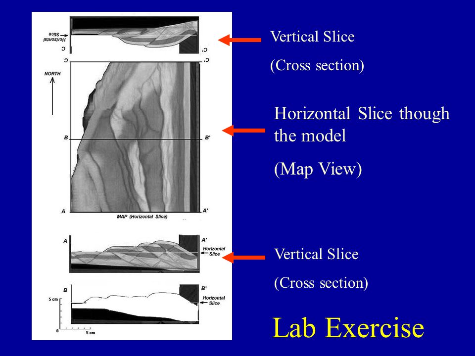 Horizontal Slice though the model (Map View) Vertical Slice (Cross section) Vertical Slice (Cross section) Lab Exercise