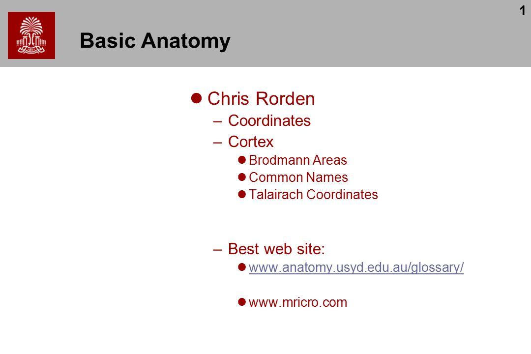 1 Basic Anatomy Chris Rorden –Coordinates –Cortex Brodmann Areas Common Names Talairach Coordinates –Best web site: www.anatomy.usyd.edu.au/glossary/ www.mricro.com