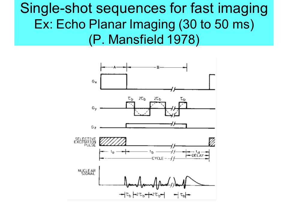 Single-shot sequences for fast imaging Ex: Echo Planar Imaging (30 to 50 ms) (P. Mansfield 1978)