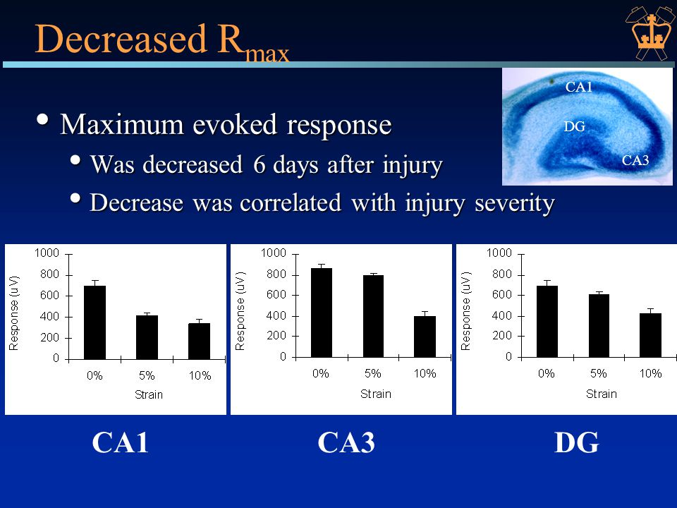 Decreased R max Maximum evoked response Maximum evoked response Was decreased 6 days after injury Was decreased 6 days after injury Decrease was correlated with injury severity Decrease was correlated with injury severity CA1CA3DG CA1 CA3 DG