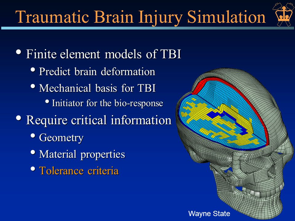 Traumatic Brain Injury Simulation Finite element models of TBI Finite element models of TBI Predict brain deformation Predict brain deformation Mechanical basis for TBI Mechanical basis for TBI Initiator for the bio-response Initiator for the bio-response Require critical information Require critical information Geometry Geometry Material properties Material properties Tolerance criteria Tolerance criteria Wayne State