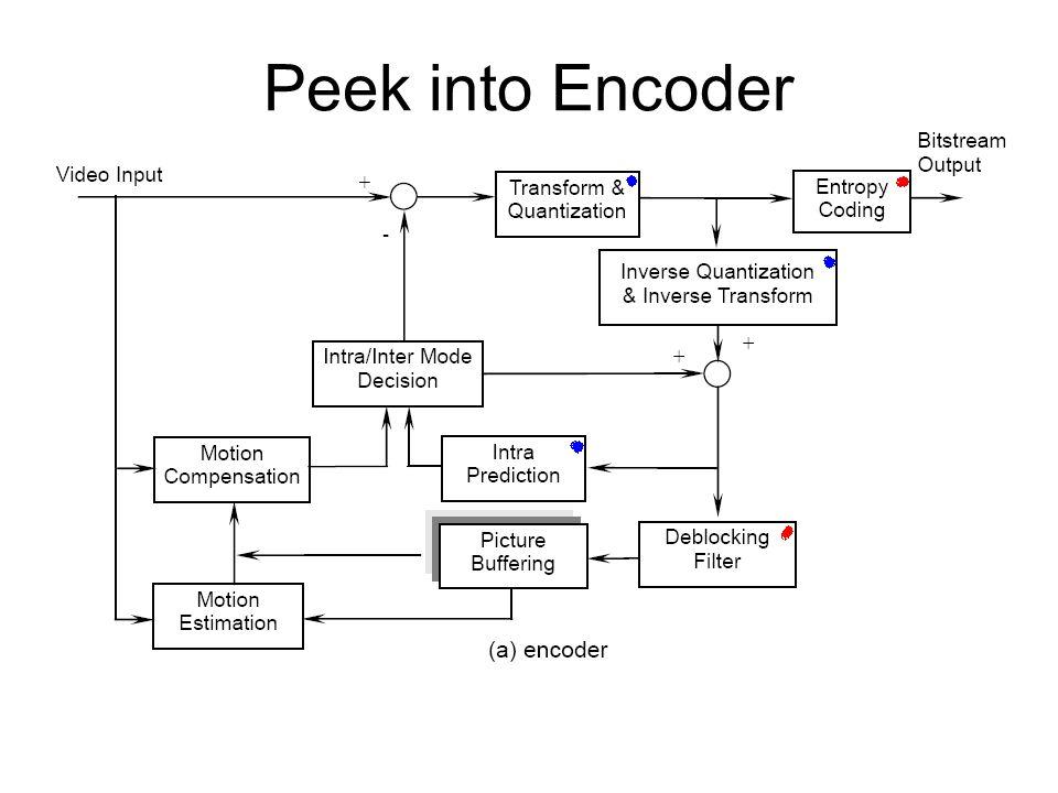Peek into Encoder