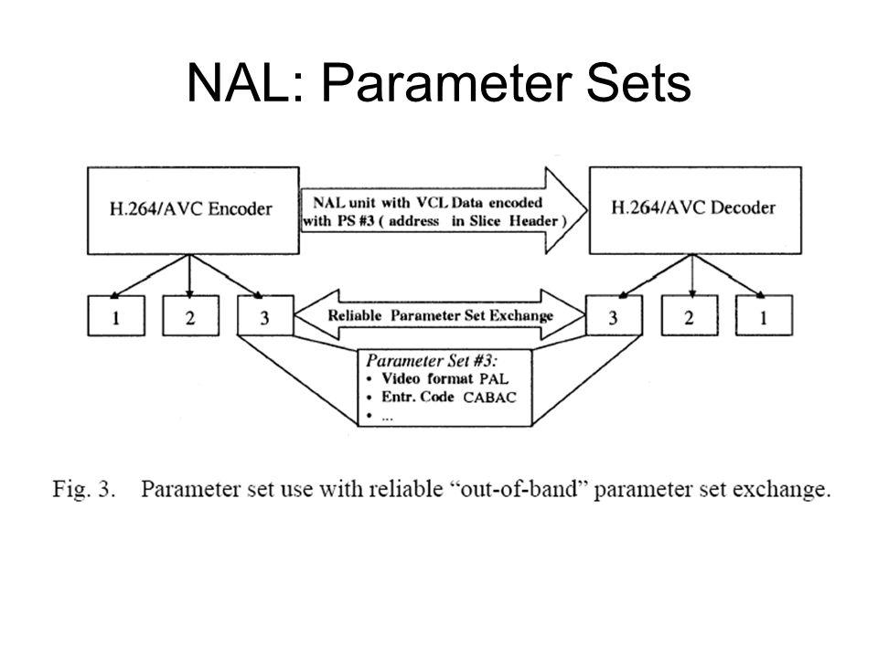 NAL: Parameter Sets