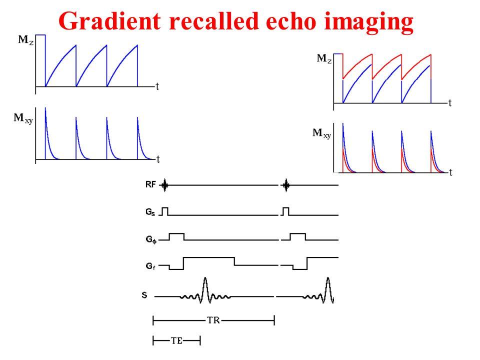 Gradient recalled echo imaging