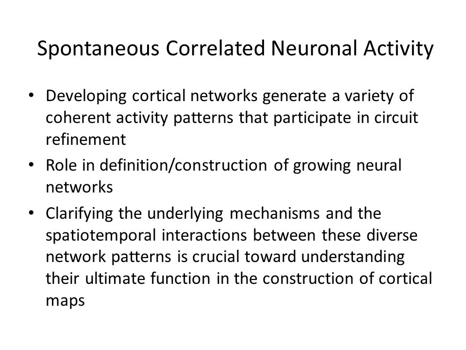 Spontaneous Correlated Neuronal Activity Developing cortical networks generate a variety of coherent activity patterns that participate in circuit refinement Role in definition/construction of growing neural networks Clarifying the underlying mechanisms and the spatiotemporal interactions between these diverse network patterns is crucial toward understanding their ultimate function in the construction of cortical maps