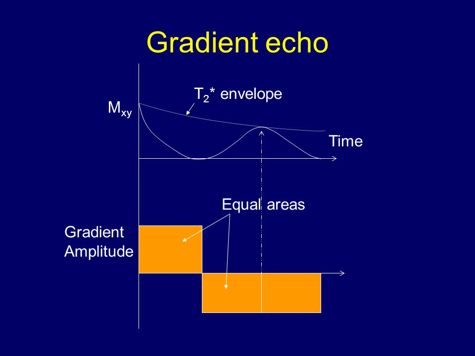 Gradient Amplitude Time M xy T 2 * envelope Equal areas
