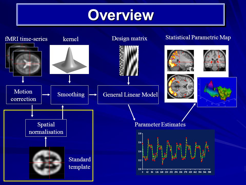 OverviewOverview Motion correction Smoothing kernel Spatial normalisation Standard template fMRI time-series Statistical Parametric Map General Linear Model Design matrix Parameter Estimates