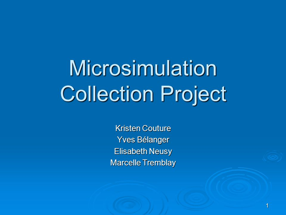 1 Microsimulation Collection Project Kristen Couture Yves Bélanger Elisabeth Neusy Marcelle Tremblay