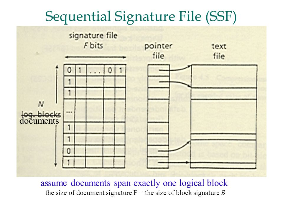 documents assume documents span exactly one logical block the size of document signature F = the size of block signature B Sequential Signature File (