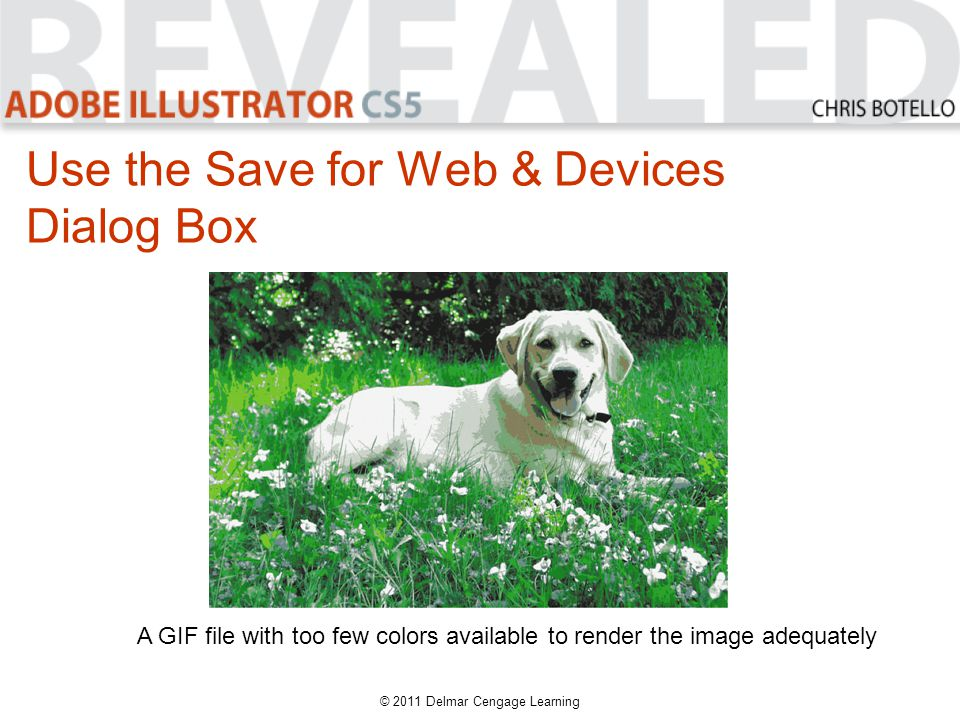 Use the Save for Web & Devices Dialog Box A GIF file with too few colors available to render the image adequately © 2011 Delmar Cengage Learning