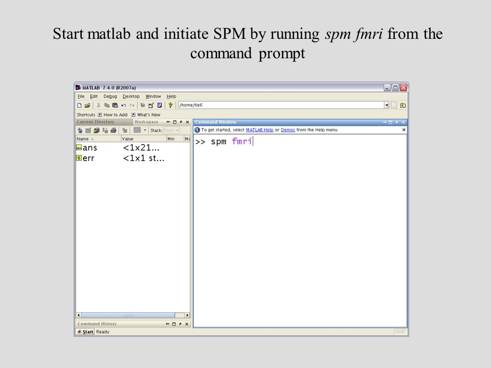 Start matlab and initiate SPM by running spm fmri from the command prompt