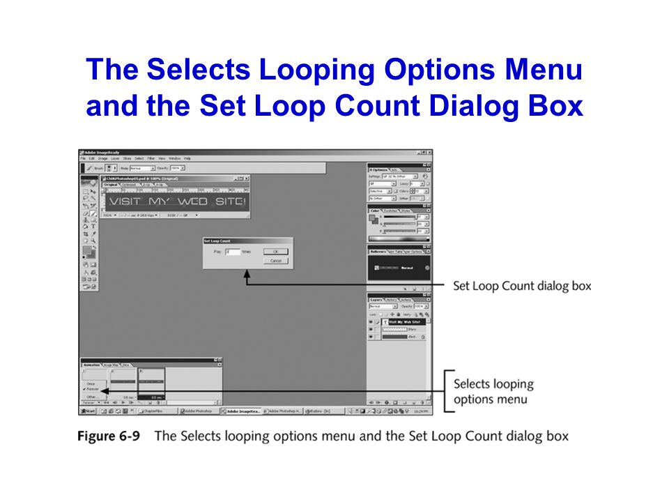 The Selects Looping Options Menu and the Set Loop Count Dialog Box