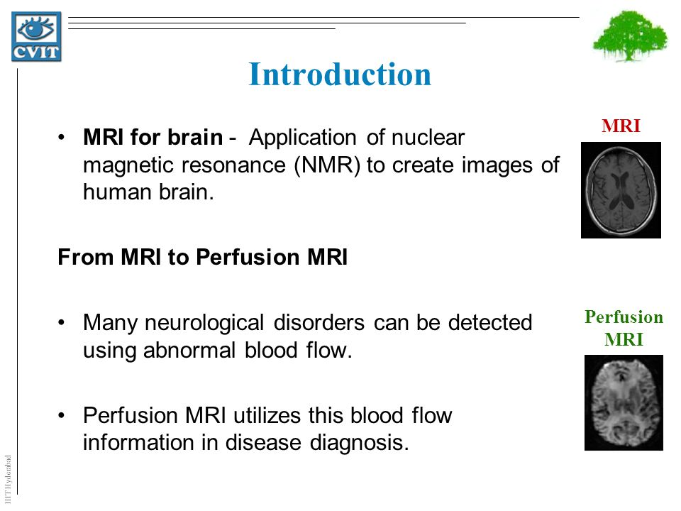 IIIT Hyderabad What is Perfusion MRI .