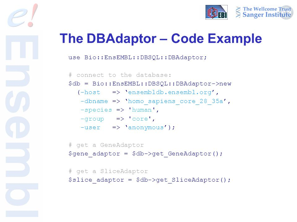The DBAdaptor – Code Example use Bio::EnsEMBL::DBSQL::DBAdaptor; # connect to the database: $db = Bio::EnsEMBL::DBSQL::DBAdaptor->new (-host => 'ensembldb.ensembl.org', -dbname => 'homo_sapiens_core_28_35a', -species => human , -group => core , -user => 'anonymous'); # get a GeneAdaptor $gene_adaptor = $db->get_GeneAdaptor(); # get a SliceAdaptor $slice_adaptor = $db->get_SliceAdaptor();