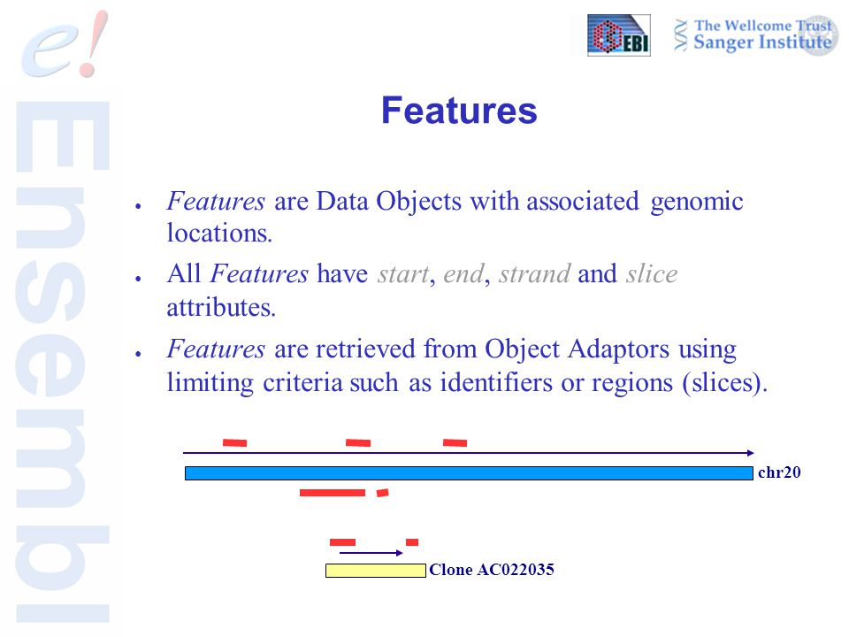 Features ● Features are Data Objects with associated genomic locations. ● All Features have start, end, strand and slice attributes. ● Features are re