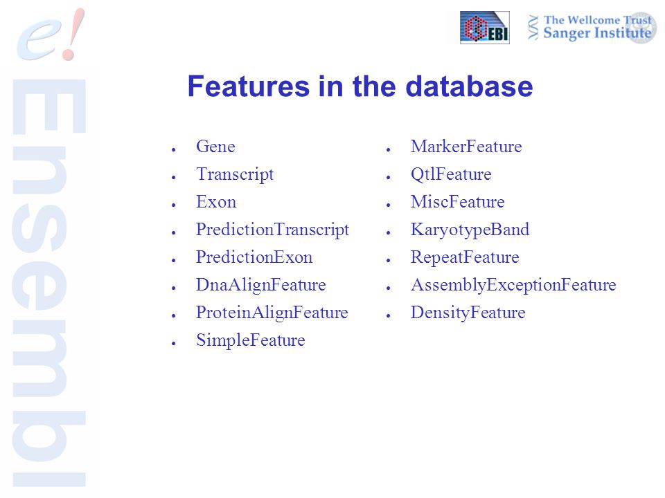 Features in the database ● Gene ● Transcript ● Exon ● PredictionTranscript ● PredictionExon ● DnaAlignFeature ● ProteinAlignFeature ● SimpleFeature ●