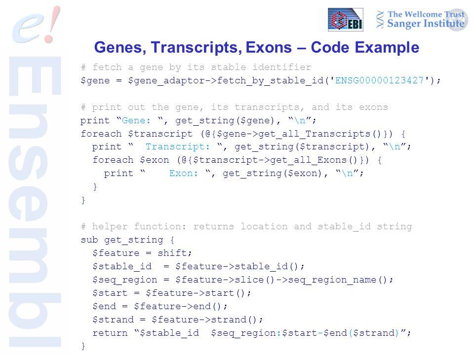Genes, Transcripts, Exons – Code Example # fetch a gene by its stable identifier $gene = $gene_adaptor->fetch_by_stable_id( ENSG00000123427 ); # print out the gene, its transcripts, and its exons print Gene: , get_string($gene), \n ; foreach $transcript (@{$gene->get_all_Transcripts()}) { print Transcript: , get_string($transcript), \n ; foreach $exon (@{$transcript->get_all_Exons()}) { print Exon: , get_string($exon), \n ; } # helper function: returns location and stable_id string sub get_string { $feature = shift; $stable_id = $feature->stable_id(); $seq_region = $feature->slice()->seq_region_name(); $start = $feature->start(); $end = $feature->end(); $strand = $feature->strand(); return $stable_id $seq_region:$start-$end($strand) ; }