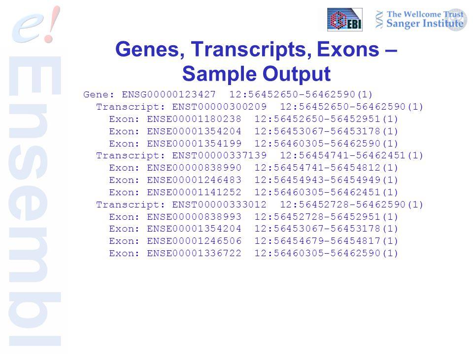 Genes, Transcripts, Exons – Sample Output Gene: ENSG00000123427 12:56452650-56462590(1) Transcript: ENST00000300209 12:56452650-56462590(1) Exon: ENSE00001180238 12:56452650-56452951(1) Exon: ENSE00001354204 12:56453067-56453178(1) Exon: ENSE00001354199 12:56460305-56462590(1) Transcript: ENST00000337139 12:56454741-56462451(1) Exon: ENSE00000838990 12:56454741-56454812(1) Exon: ENSE00001246483 12:56454943-56454949(1) Exon: ENSE00001141252 12:56460305-56462451(1) Transcript: ENST00000333012 12:56452728-56462590(1) Exon: ENSE00000838993 12:56452728-56452951(1) Exon: ENSE00001354204 12:56453067-56453178(1) Exon: ENSE00001246506 12:56454679-56454817(1) Exon: ENSE00001336722 12:56460305-56462590(1)
