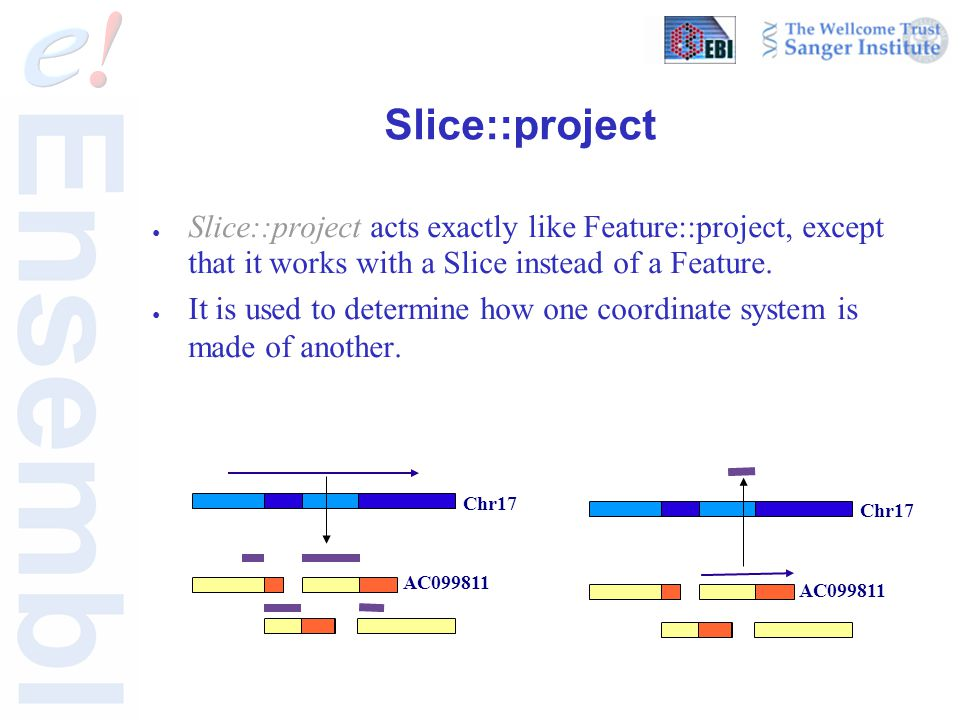 Slice::project ● Slice::project acts exactly like Feature::project, except that it works with a Slice instead of a Feature. ● It is used to determine