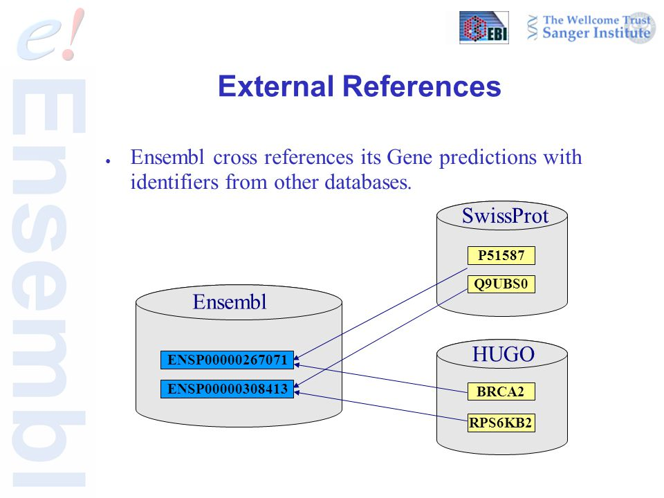 External References ● Ensembl cross references its Gene predictions with identifiers from other databases.