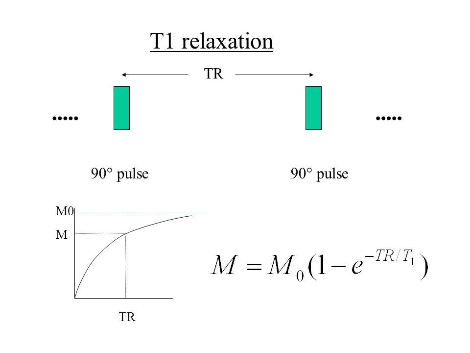 T1 relaxation TR 90° pulse TR M0 M