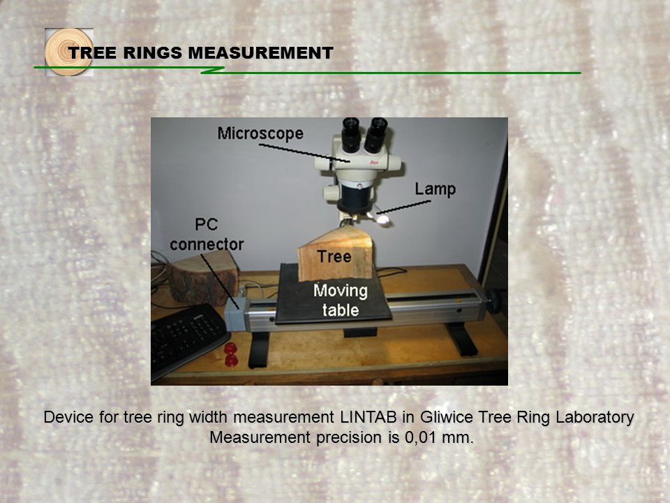 TREE RINGS MEASUREMENT Device for tree ring width measurement LINTAB in Gliwice Tree Ring Laboratory Measurement precision is 0,01 mm.