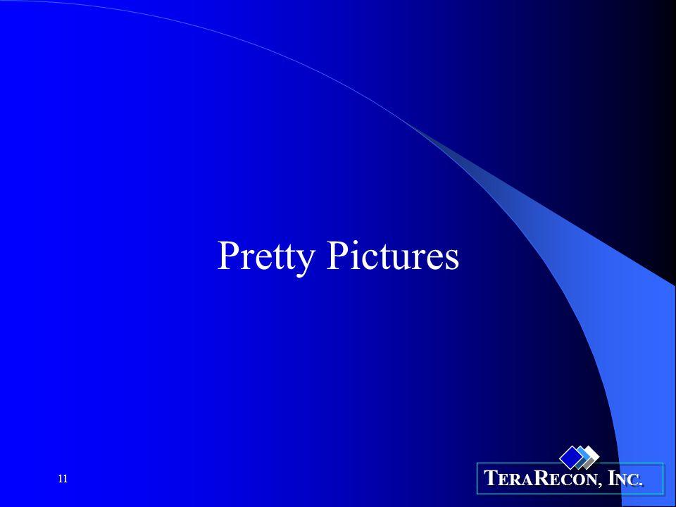 T ERA R ECON, I NC. 11 Pretty Pictures